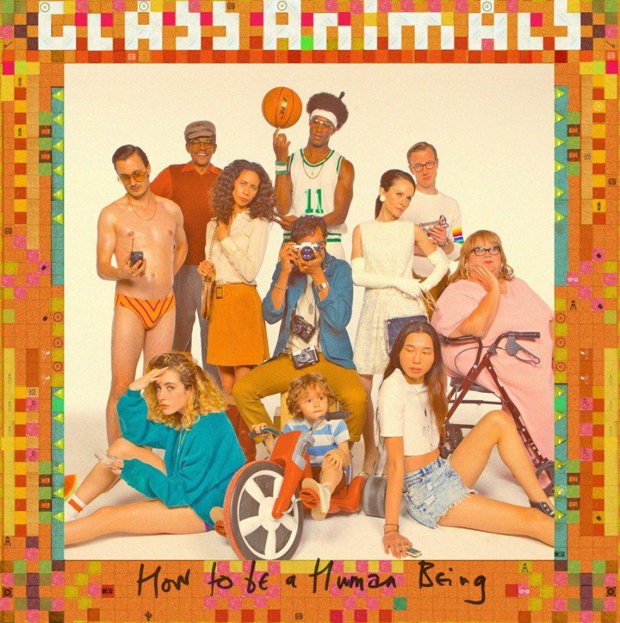 Glass Animals introduce a new sound