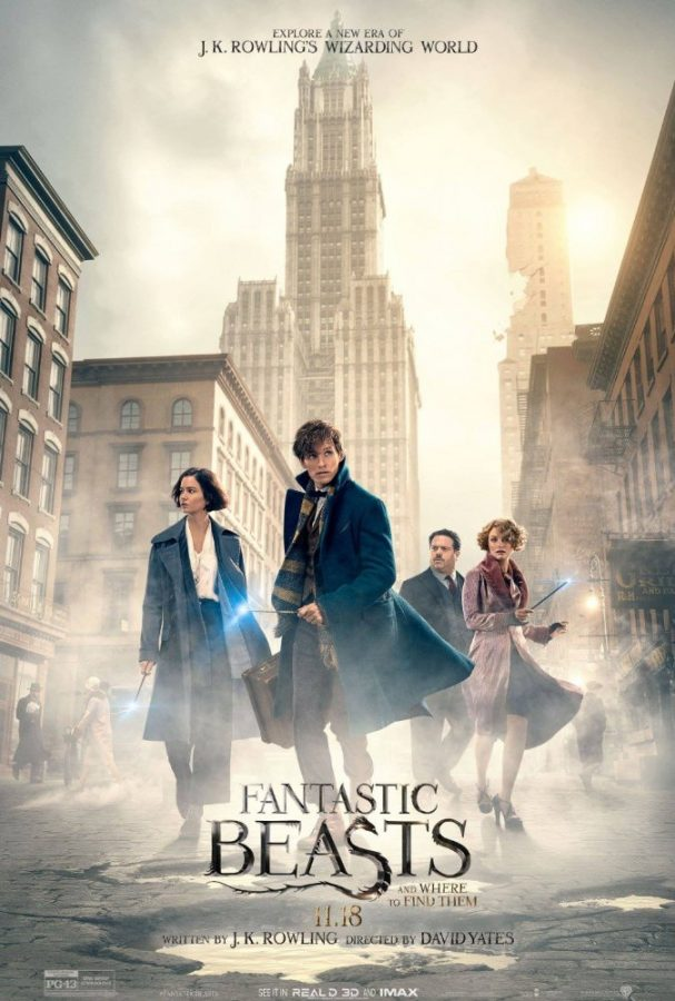 Add+%E2%80%9CFantastic+Beasts%E2%80%9D+to+your+movie+collection