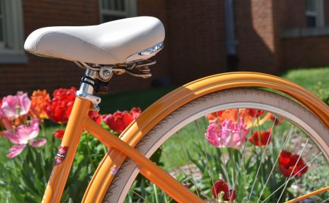 How Not To Ride A Bike Around Campus