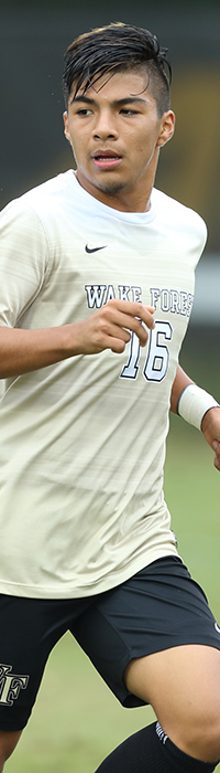 The Wake Forest Demon Deacons played host to the Virginia Tech Hokies in quarterfinals action in the 2017 ACC Men's Soccer Championship at Spry Soccer Stadium on November 5, 2017 in Winston-Salem, North Carolina.  The Demon Deacons defeated the Hokies 3-0.  (Brian Westerholt/Sports On Film)