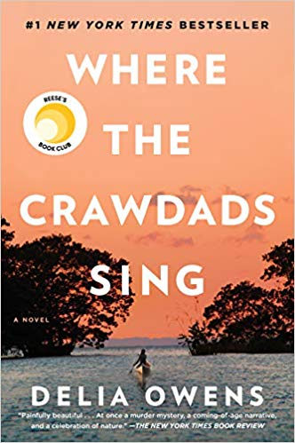 Where The Crawdads Sing Explores Social Issues