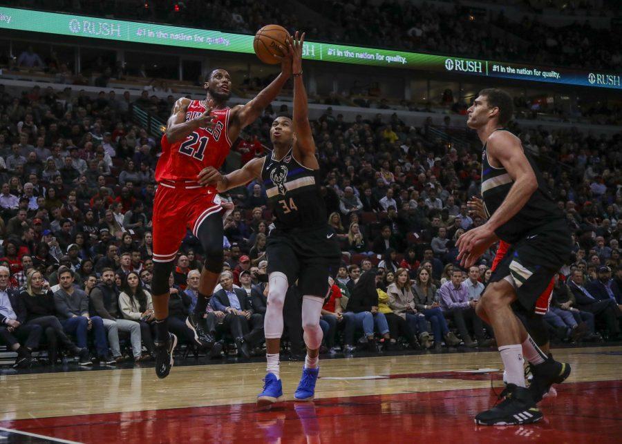 Photo courtesy of Camille Fine/Chicago Tribune/TNS