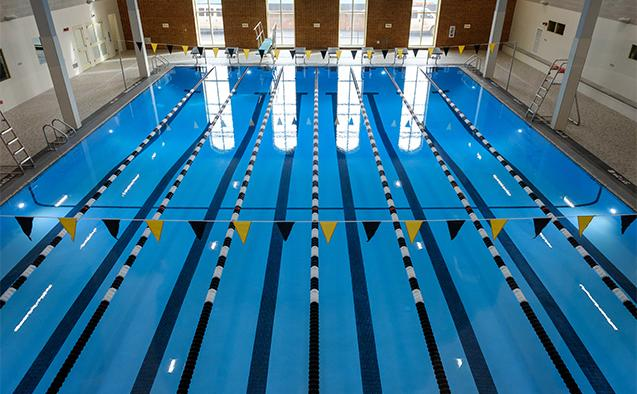 Wake Club Swimming ready to dive into 2020