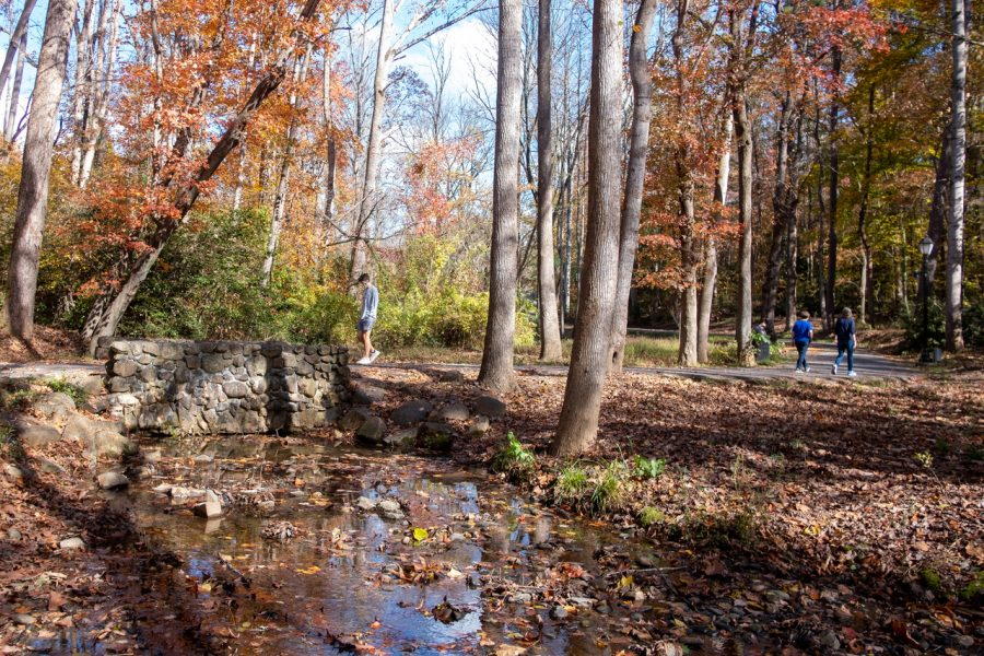 Runoff from stormwater creates pollution in streams near campus (Riley Herriman/WFU)