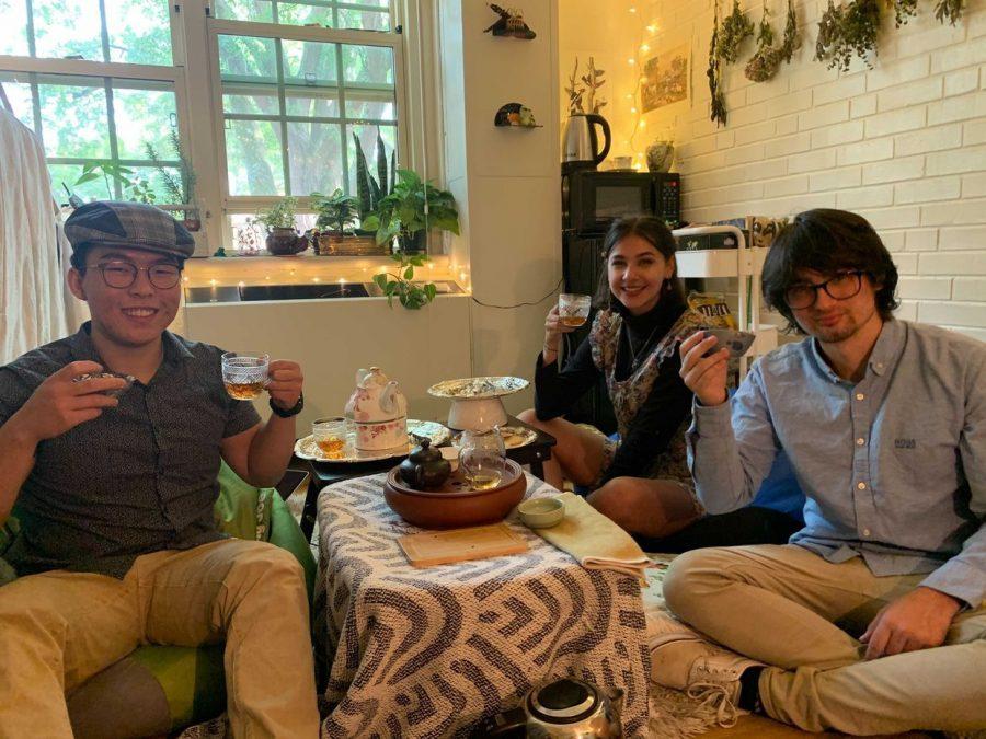 The Growing journey of tea