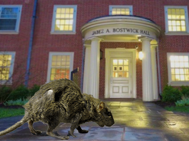 Deacon Profile: A Bostwick Rat