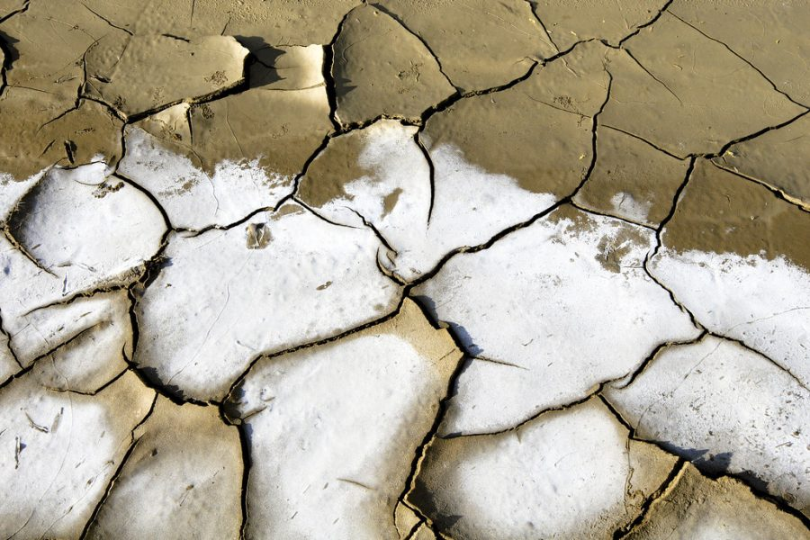 UN photographer Martine Perret captures the effects of a drought on dry-land in Timor-Leste.